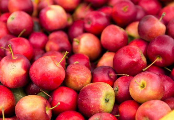 apple-556x385.jpg